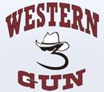 Western 3 Gun in Arizona